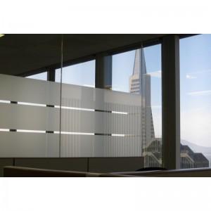 Vinilo LG 5510 Glass Film /...