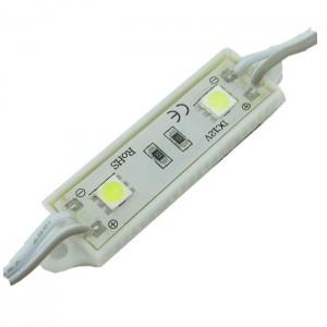 Módulo de 2 LEDs SMD5050...